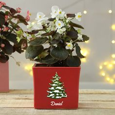 A quirky Christmas gift for your plant loving friends. This Personalized Christmas Red Planter Pot is perfect to hold all year indoor blooms. Quirky Christmas Gifts, Christmas Gift For You, Christmas Is Coming, Christmas Themes, Christmas 2019, Merry Christmas, Xmas, Online Gift Store, Online Gifts
