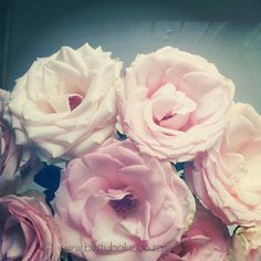 Photo by bettybake Treating Pcos, Girly, Treats, Day, Health, Instagram Posts, Flowers, Plants, Pink