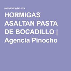 HORMIGAS ASALTAN PASTA DE BOCADILLO | Agencia Pinocho