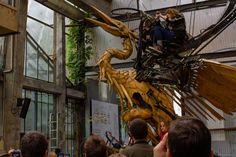Nouveau Portfolio : J'ai rétréci le photographe – Les Machines de l'île  Bonjour,  Bienvenue dans le monde de l'infiniment grand, où les araignées font la taille d'un éléphant et un éléphant, la taille digne d'un dinosaure.  Vous pouvez désormais savoir ce que ressent une fourmi à Nantes et ainsi découvrir Les Machines de l'île afin de vous promener sur le dos du Grand Eléphant, explorer les ateliers et bientôt, prendre son envol sur le dos d'un héron. Explorer, Afin, Fair Grounds, Ant, Dinosaurs, Nantes, Welcome, Bonjour, World
