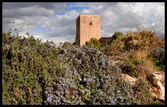 Castillo Fortaleza del Sol, Lorca, Murcia.