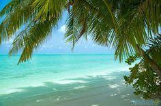 Söderhavet. ☀️