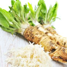 The Healing Powers of Raw Horseradish: A Natural Antibiotic - Natural Health - MOTHER EARTH NEWS
