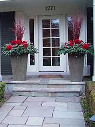 Image result for christmas decorated outdoor bushes