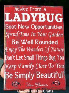 Ladybug Sign  Home Decor  Kitchen  Dining by CarovaBeachCrafts, $41.00