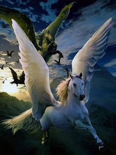 Pegasus pinned by Dawn @ https://au.pinterest.com/madriddawn/