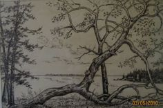 Pencil and ink sketch on paper, signed L. Hambly 1971. - $45  This lovely little pencil and ink sketch of coastal British Columbia features wonderful arbutus trees in the foreground and an incredible coastal ocean scene.  This well executed drawing is a wonderful example of local Vancouver Island landscape.  Framed measurement height 10.25 inches X width 13.25 inches.  clientservices@dejavuantiquesandcollectables.com