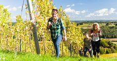 Wer sein Fahrrad gegen die Wanderschuhe tauscht, erlebt in der Region Bad Radkersburg eine der schönsten Arten der Fortbewegung: das Weinwandern  #RegionBadradkersburg #Weinwandern