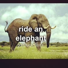 Good one to add to my #bucketlist; it must be fun to ride an elephant (+: