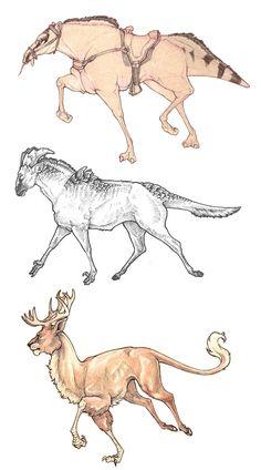 Quadruped Creature doodles