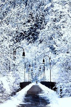 """Fussen, Germany, """"Snowy bridge"""" by Jorge Maia Winter Szenen, Winter Magic, Winter White, Winter Christmas, Winter Walk, Paris 11, Snowy Day, Snow Scenes, Winter Beauty"""