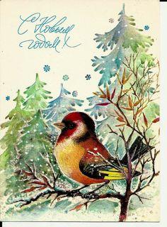 Bird in Winter  Vintage  Russian Postcard by LucyMarket on Etsy, $3.50