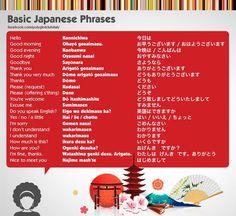 今日は (konnichiwa) Hola   お早うございます。 (ohayou gozaimasu) Buenos días  今晩は (konbanwa) Buenas noches  おやすみなさい (oyasumi nasai) Buenas noches   さようなら (sayounara) Adiós  ありがとうございます (arigatou gozaimasu) Gracias  どうもありがとうございます (doumo arigatou gozaimasu) Muchas gracias  どうも (doumo) Gracias  ください (kudasai) Por favor  どうぞ (douzo) Por favor  どういたしまして (dou itashimashite) De nada  すみません (sumimasen) Perdón  英語はできますか (eigo wa dekimasu ka?) ¿Hablas inglés?  はい (hai) Sí  いいえ (iie) No  ちょっと (chotto) Un poco…