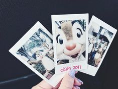 "265 Likes, 8 Comments - Waltmeetsmariah (@waltmeetsmariah) on Instagram: ""Back to when Dale took my Polaroid and had the best selfie ever!"""