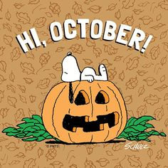 👻 Hello October (with Snoopy! Snoopy Halloween, Charlie Brown Halloween, Charlie Brown Christmas, Charlie Brown And Snoopy, Halloween 2018, Christmas Carol, Halloween Wallpaper Iphone, Fall Wallpaper, Peanuts Cartoon