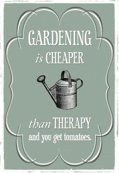 Por eso trabajo en mi jardín,ja,ja!
