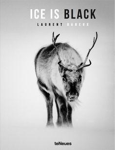 """Laurent Baheux PhotoCompte certifié @laurentbaheux  19 sept. """"ICE IS BLACK"""" Entre -30 et -45° Celsius, mon travail dans l'Arctique objet d'un nouveau livre http://www.laurentbaheux-shop.com/fr/accueil/16-ice-is-black.html … #polarbear #Arctic Laurent Baheux Photo"""