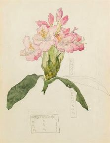 Watercolour, by Charles Rennie MacKintosh