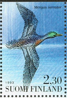 Red-breasted Merganser stamps - mainly images - gallery format