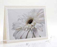 http://www.etsy.com/listing/85939668/pastel-white-photo-note-card-herbera    Pastel white photo note card herbera daisy by IrinaPhotographyCard, $3.99    #card, #notecard, #greeting #white #gift #flower #wedding, #birthday