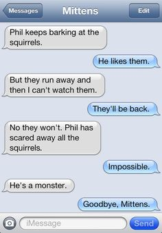 Text Messages from Mittens the Cat | Catster