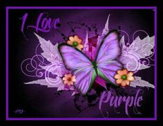 I love purple. And butterflies. It's a Win win Purple Art, Purple Love, Purple Butterfly, All Things Purple, Shades Of Purple, Deep Purple, Purple And Black, Pink Purple, Purple Stuff