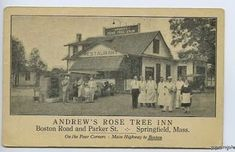Springfield Massachusetts, Rose Trees, Local History, Vintage World Maps, Painting, Art, Art Background, Painting Art, Kunst
