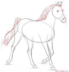 How to draw an arabian horse | Step by step Tutorial de desenho