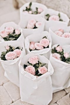 Small pot of mini roses would make great bridal shower or wedding favors. Trader joes has mini roses. My Flower, Fresh Flowers, Pretty In Pink, Beautiful Flowers, Flower Dance, Potted Flowers, Flower Spray, Pretty Roses, Blooming Flowers