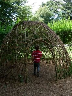 Great den to make with the wisteria and apple sticks.  Stefan, get to work :)