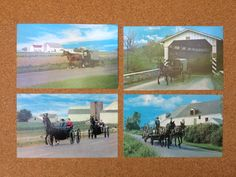 60's Amish Postcards  Set of 4 Greetings From by ElkHugsVintage
