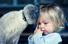 koty i dzieci