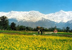 Himachal is one of the leading hill stations in India