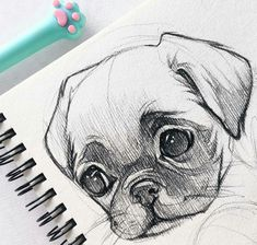 40 Free & Easy Animal Sketch Drawing Information & Ideas - Drawing . 40 Free & Easy Animal Information & Ideas - Drawing sketch drawing ideas - Sketch Drawing Easy Pencil Drawings, Pencil Sketch Drawing, Art Drawings Sketches, Drawing Ideas, Drawing Drawing, Sketch Ideas, Drawing Base, Disney Drawings, Sketch Inspiration