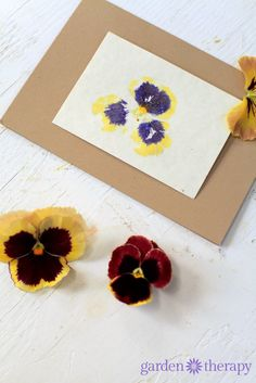 """Pretty hammered flower print cards using pansies. Place the petals on paper and use a rock or hammer to """"print"""" them. These turned out beautifully!"""