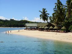 Little Gumnut: Travel Bug: Plantation Island, Fiji Islands