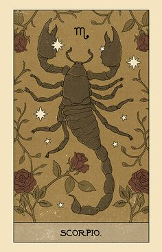 Horoscope on Behance Art Scorpio, Zodiac Art, Room Posters, Poster Wall, Poster Prints, Photo Wall Collage, Collage Art, Art Zodiaque, Tarot
