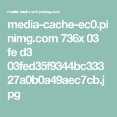 media-cache-ec0.pinimg.com 736x 03 fe d3 03fed35f9344bc33327a0b0a49aec7cb.jpg