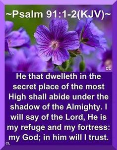 nnv-sons-and-kings | He that dwelleth in the secret place of The MOST HIGH shall abide under the Shadow of The ALMIGHTY. I will say of The LORD, HE is my refuge and my fortress: my GOD; in HIM will I trust.