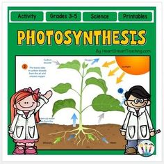 Photosynthesis Activity Pack : Students will love all the activities in this Photosynthesis Activity Pack!This Photosynthesis Activity Pack has it all! This pack includes everything you need to teach, investigate, and learn all about photosynthesis.