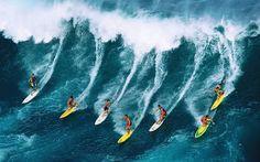 ÁJAX - NOTÍCIAS: GUARUJÁ SURF E AÇÃO SOCIAL