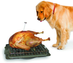 Are Thanksgiving Dinner Table Scraps Safe for Yourdog?