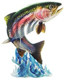 This Leaping Rainbow Trout Steel Reflective Wall Art of a trout jumping out of the water is wonderful for a lakehouse. Trout Fishing, Fly Fishing, Fishing Gifts, Rainbow Trout Picture, Trout Tattoo, Fish Jumps, Fish Artwork, Water Drawing, Fishing Pictures