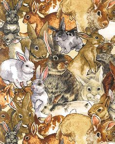 'So Many Bunnies' collection by Wendy Edelson for Wilmington Prints. Rabbit Art, Bunny Rabbit, Illustrations, Illustration Art, Lapin Art, Year Of The Rabbit, Some Bunny Loves You, Bunny Art, Funny Bunnies