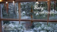 December Desktop - Helen Fern Photography (IMM #111)