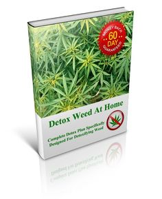 Detox Weed At Home – Brand New Product! | E-book Download | Ebook Review