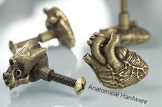 Anatomical Heart Cabinet Hardware, Antique Bronze (Made in NYC) $18.50 \\ Unexpected and a little weird - perfection