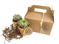 Resultado de imagem para corporate paper gifts