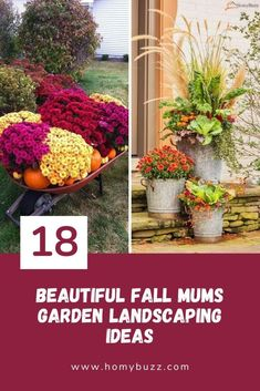 18 Beautiful Fall Mums Garden Landscaping Ideas - HomyBuzz Garden, Garden Landscaping, Autumn Garden, Nasturtium, Fall Flowers Garden, Flower Garden, Landscape, Fall Mums, Mums Flowers