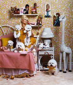 Amy Sedaris in her room Jerri Blank, Amy Sedaris, Comedy And Tragedy, Angels In Heaven, Bichon Frise, Rainbow Bridge, Over The Rainbow, Sweet Girls, Kitsch